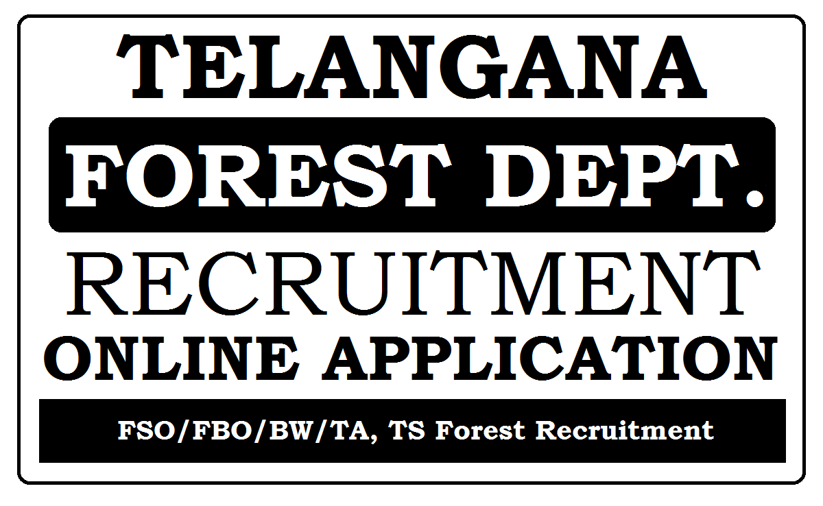 TS Forest Recruitment 2020